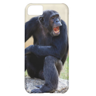 Shouting Chimp iPhone 5C Cover
