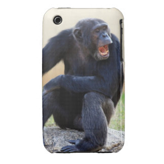 Shouting Chimp iPhone 3 Case-Mate Cases