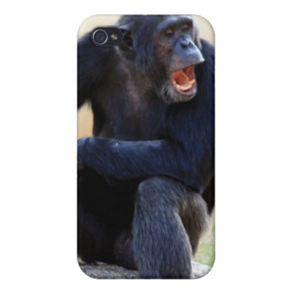 Shouting Chimp iPhone 4 Case