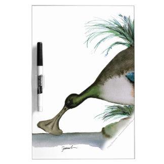 shoveller duck, tony fernandes dry erase board
