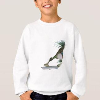 shoveller duck, tony fernandes sweatshirt