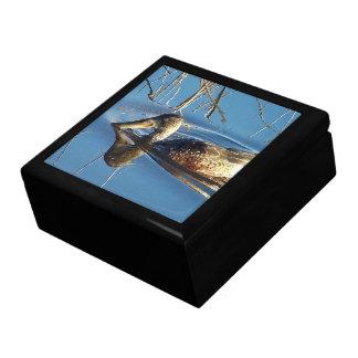 Shovelor Duck Gift Box