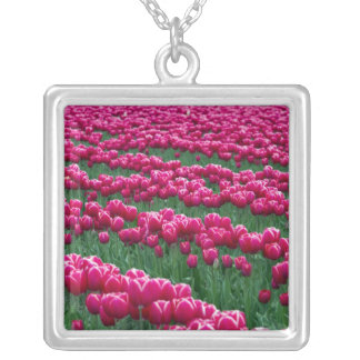 Show garden of spring-flowering tulip bulbs in silver plated necklace