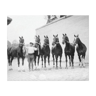 Show Horses, 1912 Gallery Wrap Canvas