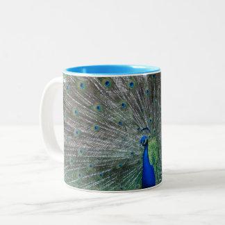 Show Off Mug