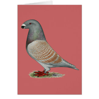 Show Racer Recessive Opal Note Card
