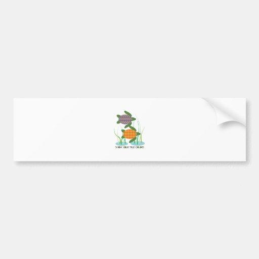 Show Your True Colors Bumper Stickers