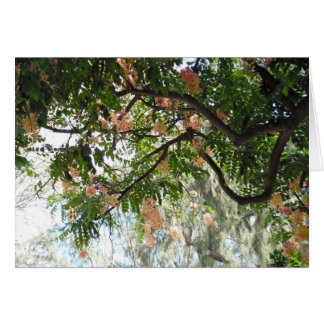Shower Tree Card