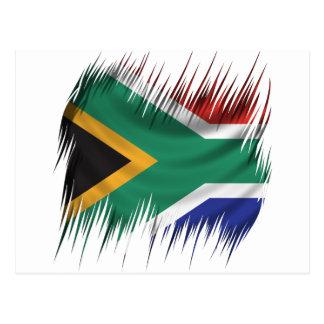 Shredders South Africa Flag Postcard