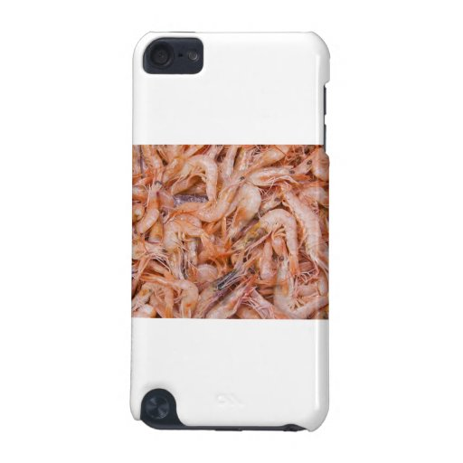 Shrimps iPod Touch (5th Generation) Cases