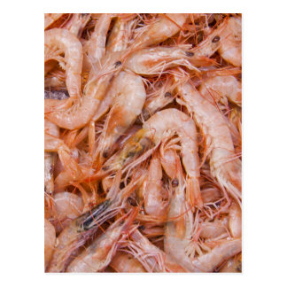 Shrimps Postcard