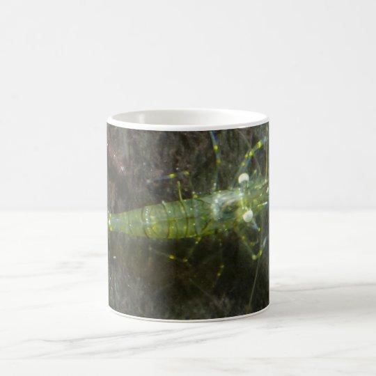 Shrimps White Coffee Mug