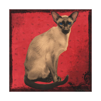 shrinked cat red canvas print