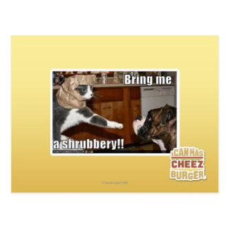 Shrubbery Postcard