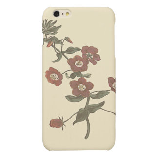 Shrubby Pimpernel Botanical Illustration iPhone 6 Plus Case