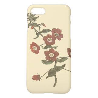 Shrubby Pimpernel Botanical Illustration iPhone 7 Case