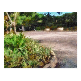 Shrubs and road postcard