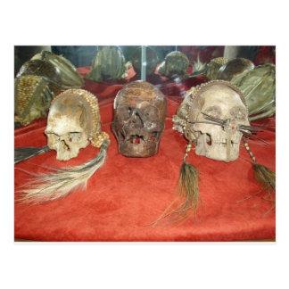 Shrunken Heads Voodoo Display Postcard