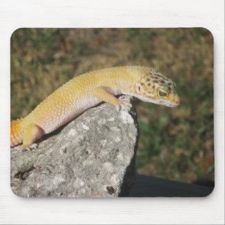 SHTCT Leopard Gecko Mouse Mat