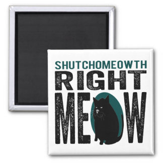 ShutchoMEOWth Right Meow - Funny Kitty Cat Magnets
