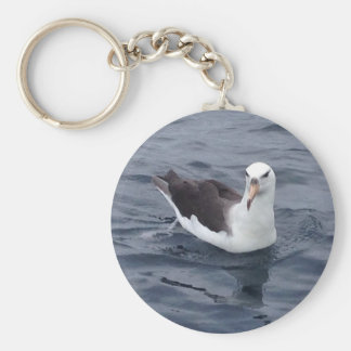 Shy Albatross Key Ring