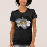 Shy Dog Rose Dappled in Sunlight Shirt
