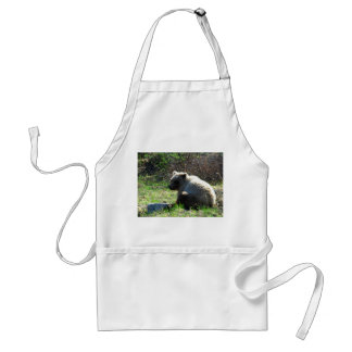 Shy Grizzly Adult Apron