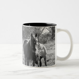 Shy Two-Tone Mug