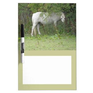 Shy White Horse Memo Board