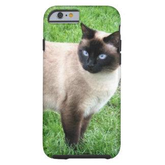 SIAMESE BEAUTY TOUGH iPhone 6 CASE
