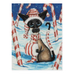 Siamese Candy Cane Kitty Postcard