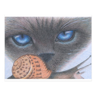 Siamese cat and snail postcard