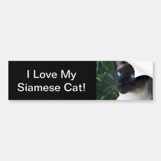 Siamese Cat Blue Eyes Car Bumper Sticker