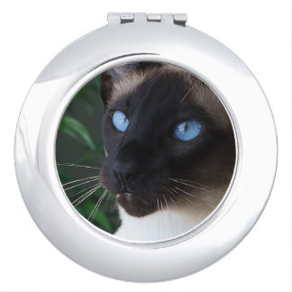 Siamese Cat Blue Eyes Mirrors For Makeup