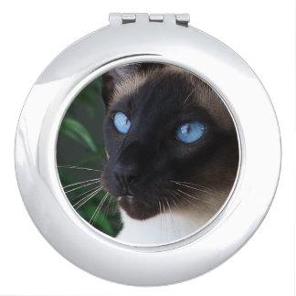Siamese Cat Blue Eyes Vanity Mirror