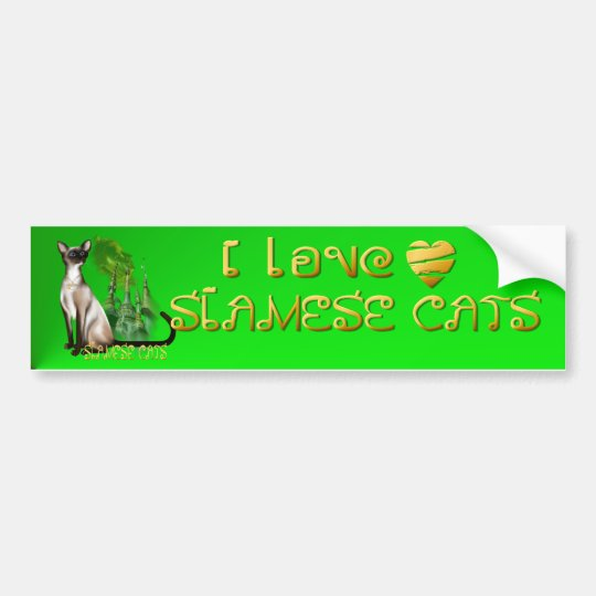 Siamese Cat  Bumper Sticker