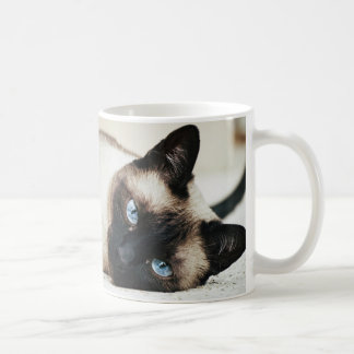 Siamese Cat Coffe Mug