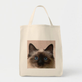 siamese cat crackle old aged cracked Hi Hello Canvas Bags