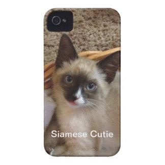 Siamese cat cute Case-Mate iPhone 4 cases