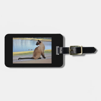 Siamese Cat Jazell Luggage Tag with leather strap