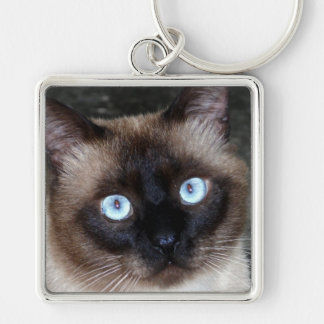 Siamese Cat Portrait Key Ring