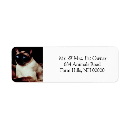Siamese Cat Return Address Stickers Labels