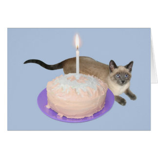 Siamese Cat with Birthday Cake Greeting Card