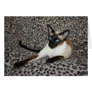 Siamese Cat with Leopard Print Wild Animal Spots Card