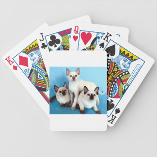 Siamese Cats Bicycle Playing Cards