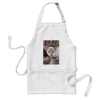 Siamese, chocolate tabby point adult apron