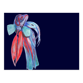 Siamese Fighting Fish Postcard
