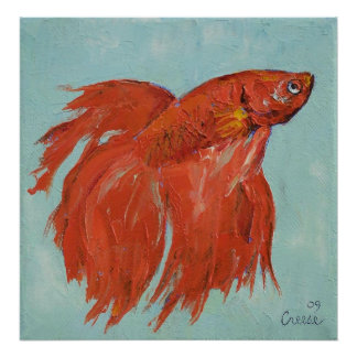 Siamese Fighting Fish Print