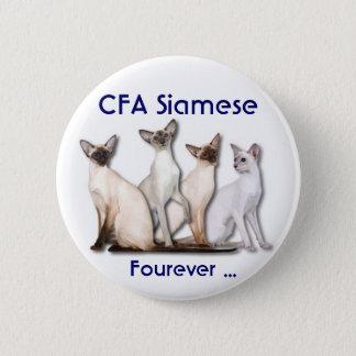 Siamese Forever 6 Cm Round Badge