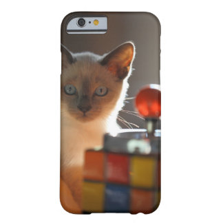 Siamese kitten barely there iPhone 6 case